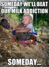 cat, baby, meme, milk addiction, swing, cute