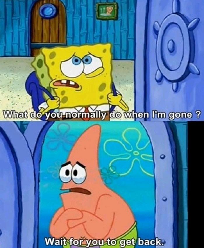 spongebob squarepants, patrick, comic, friends