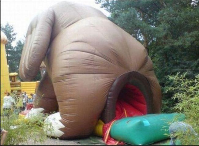 inflatable bouncy house, fail, dog, anus, wtf