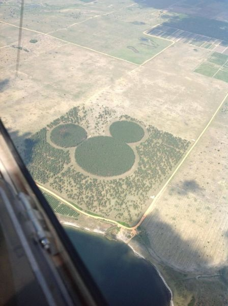 mickey mouse, logo, disney, crop art, aerial shot