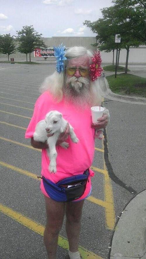 old man, wtf, lamb, pink shirt, long hair
