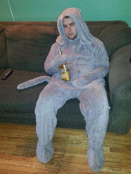 eeyore, costume, wtf, beer