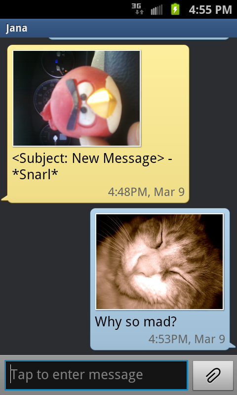 angry bird, cat, text message