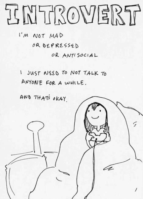 introvert, i am ok, not mad, not depressed, not angry