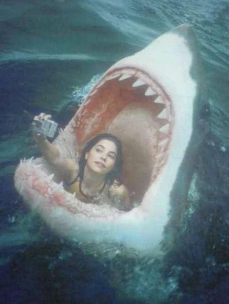 girl takes selfie in skark's mouth, photoshop, lol