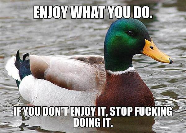 actual advice mallard, meme, enjoy what you do