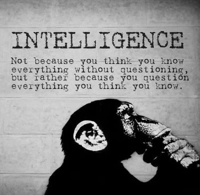 intelligence, question what you think you know