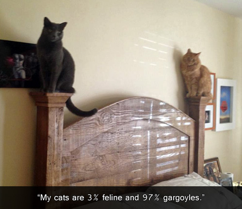 cats, feline, gargoyle, bed posts, lol