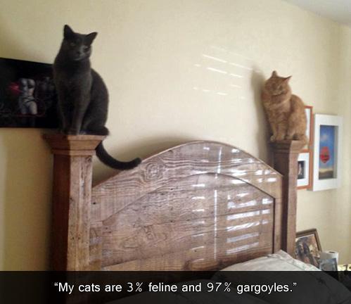 cats, feline, gargoyle, bed posts, lol