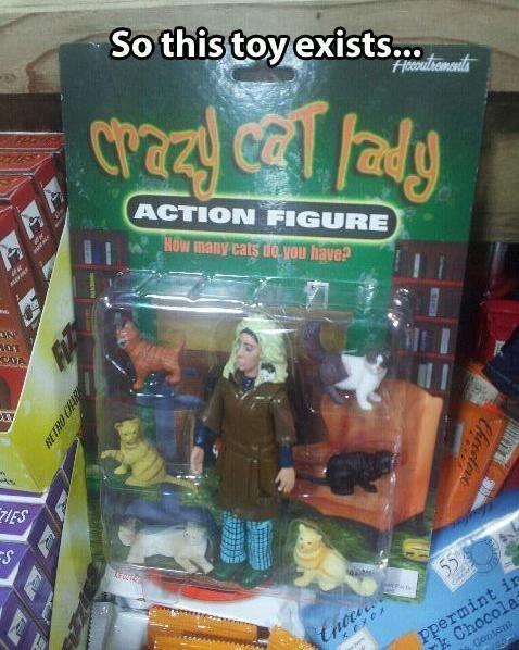 crazy cat lady, action figure, wtf, product, meme