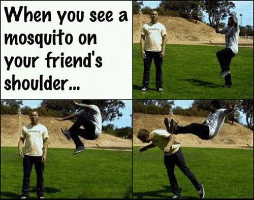 mosquito, troll, friend, jump kick
