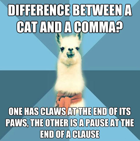 difference between a cat and a comma?, one has claws at the end of its paws, the other is a pause at the end of a clause, meme