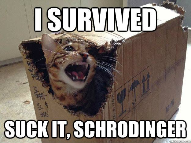 I survived, suck it schrodinger, cat, meme, science joke