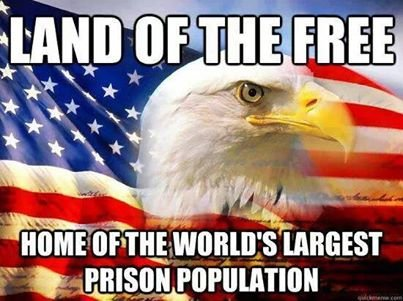 land of the free, meme, home of the world's largest prison population, bald eagle, meme