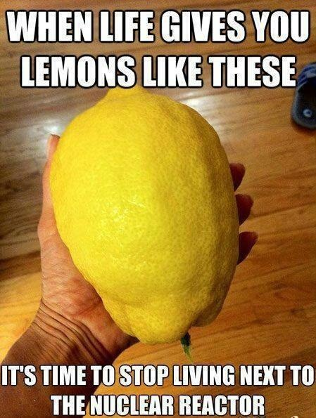 when life gives you lemons like these it is time to stop living next to the nuclear reactor, giant lemon, meme, wtf