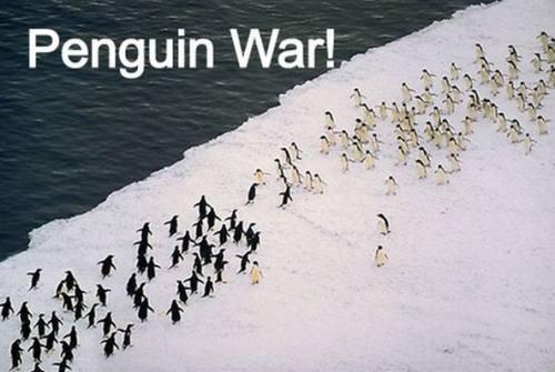 penguin, war, group, ice, water, antartica