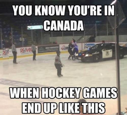 canada, hockey, fight, police car