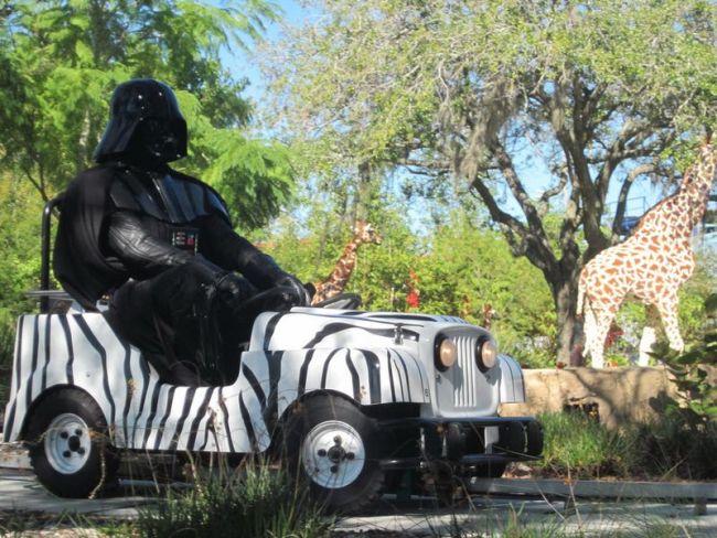 darth vader, zebra car, giraffe, wtf