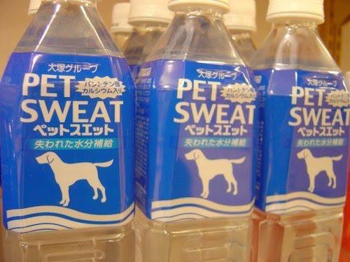 pet sweat, engrish, fail, product, awkward name, wtf
