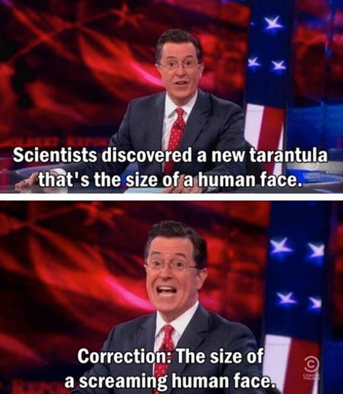 stephen colbert, new tarantula the size of a screaming human face