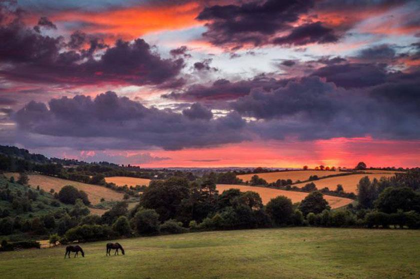 scenery, nature, fields, sky, sun set, ireland