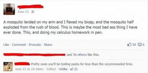 facebook, exploded mosquito, calculus homework in pen, bad ass