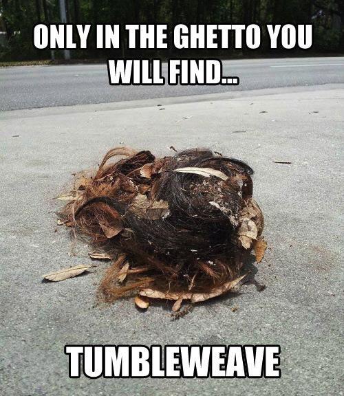 tumbleweed, tumbleweave, wordplay, ghetto, hair, eww, disgusting