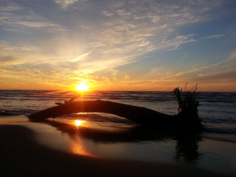 scenery, nature, beach, sunset, photography