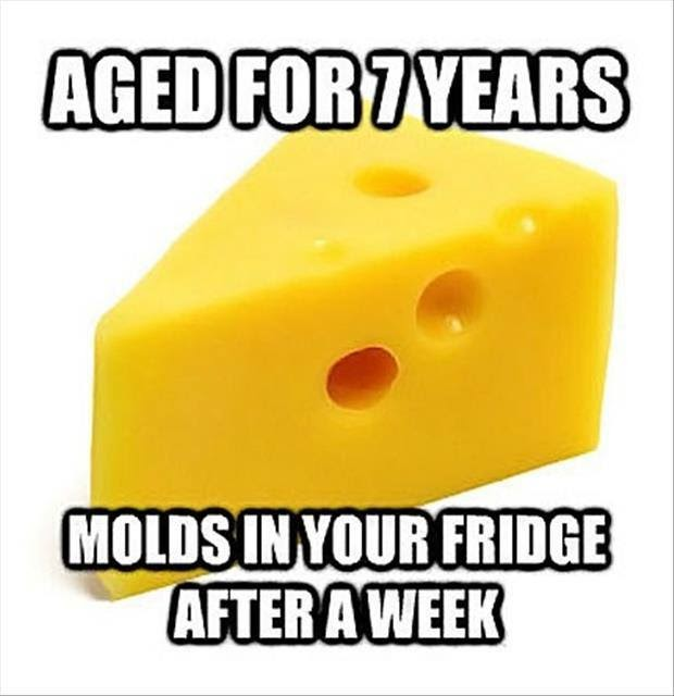 scumbag cheese, meme, aged for 7 years, moldy after a week