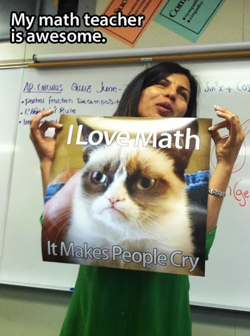 My math teacher is awesome, I love math it makes people cry, grumpy cat, meme