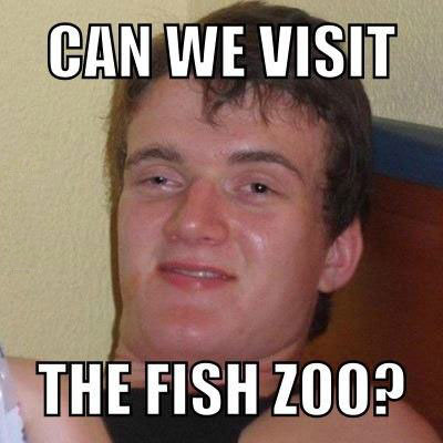 fish zoo, aquarium, stoner guy, meme