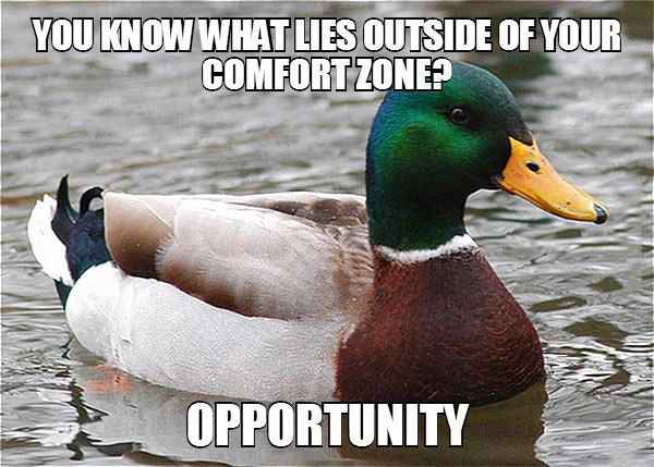 actual advice mallard, meme, opportunity lies outside your comfort zone