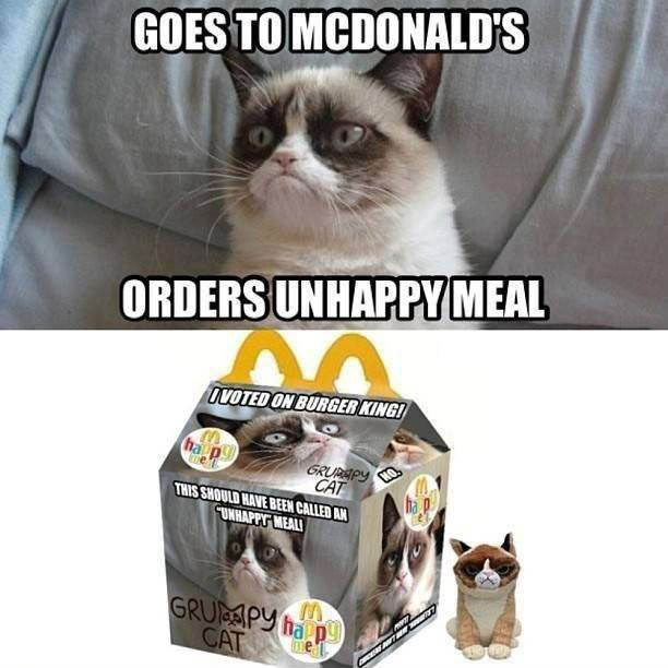 grumpy cat, goes to mcdonald's, unhappy meal