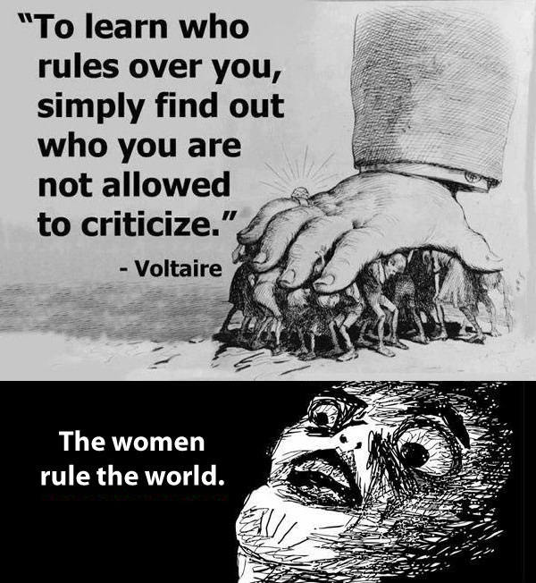 women rule the world, voltaire, quote, not allowed to criticize