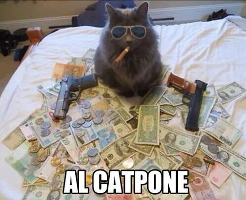 al catpone, money, guns, cash, cigar, sun glasses