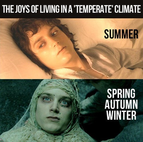 temperate climate, lotr, frodo, summer, winter, spring, fall, meme
