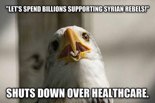 patriotic eagle meme, government shut down