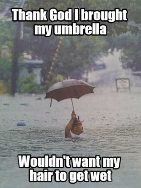 thank god I brought my umbrella, wouldn't want to get my hair wet, meme, flood
