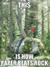meme, paper beats rock, tree, forest, nature