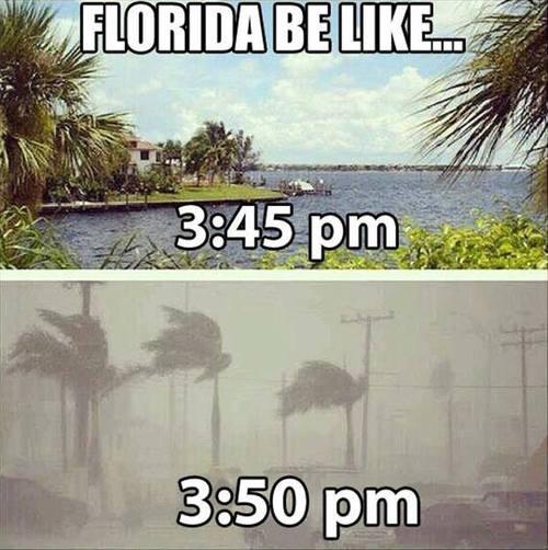 florida, weather
