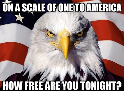 pick up line, on a scale one to america, how free are you?