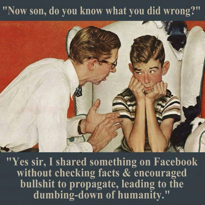 shared something without checking facts, leading to dumbing down of humanity