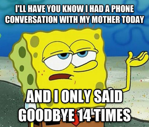 spongebob squarepants, meme, on the phone with mother, said goodbye 14 times