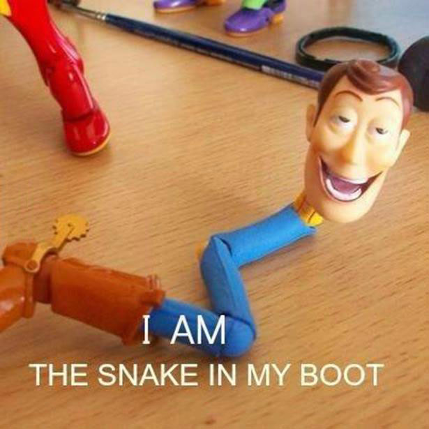 woody, snake in my boot, action figure, wtf