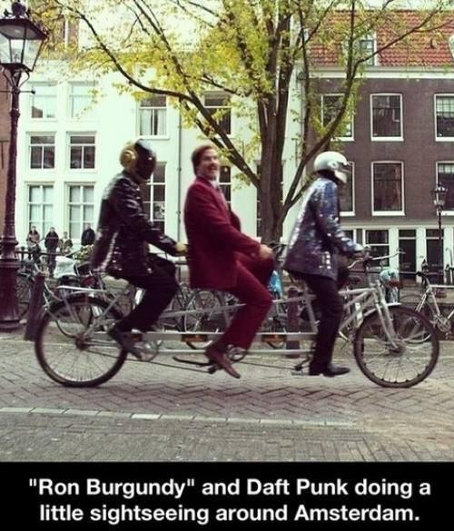 ron burgundy, daft punk, amsterdam