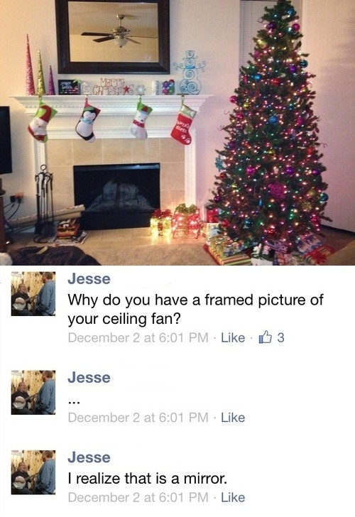 framed picture of a ceiling fan, christmas, joke, lol