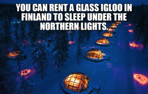you can rent a glass igloo in finland to sleep under the northern lights