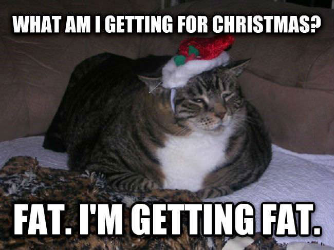 what am i getting for christmas? fat, i'm getting fat, meme, lol