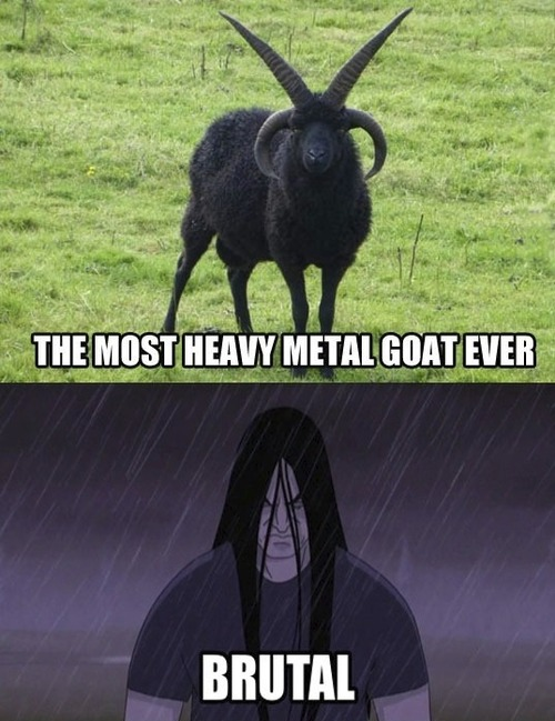 the most heavy metal goat ever, meme, brutal