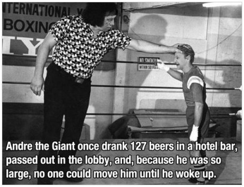 andre the giant, story, 127 beers at a hotel bar and passed out in the lobby